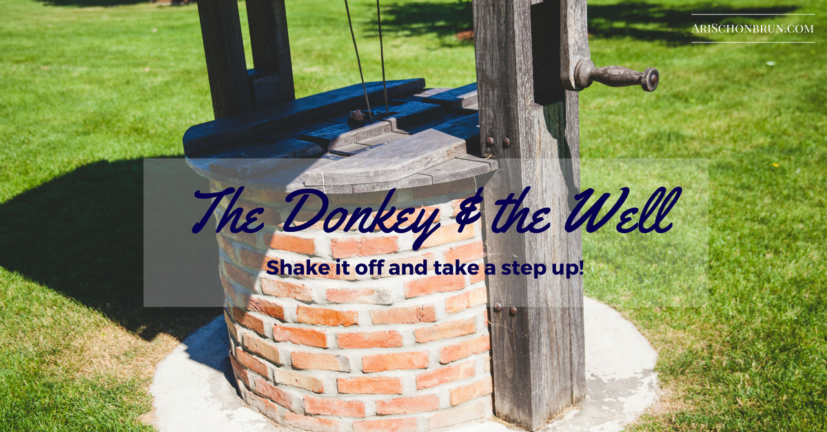 The Donkey And The Well